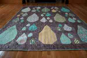 Tula Pink Raindrops quilt with modern machine quilting